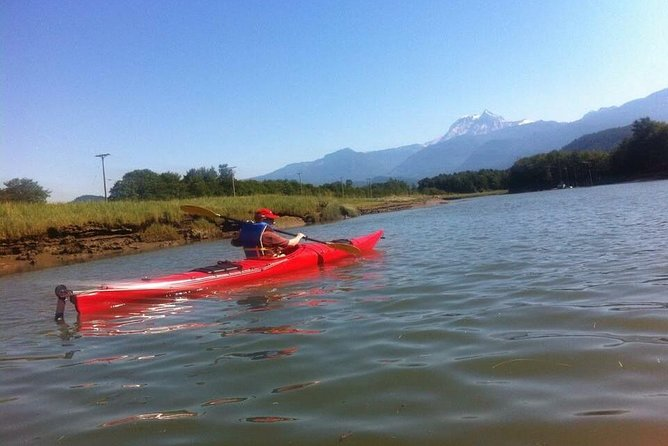 Guided Kayak Tour: Squamish Harbour and Estuary Tour