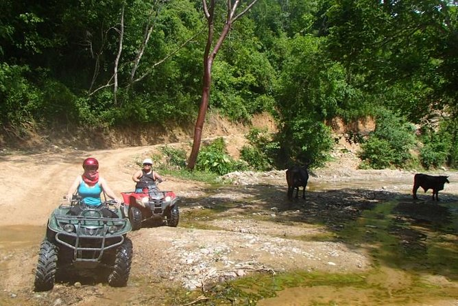 Private Tour: ATV SIERRA MADRE