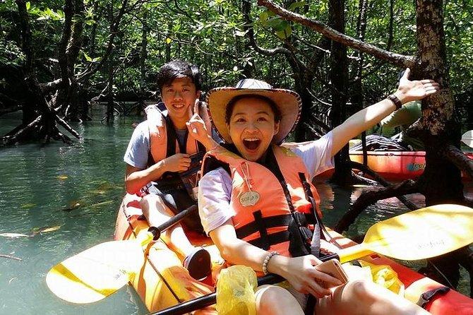 Mangrove Forest Kayaking Tour from Langkawi