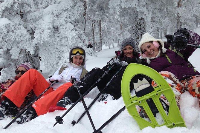 Sne Vandretur i Madrid - Lille Gruppe