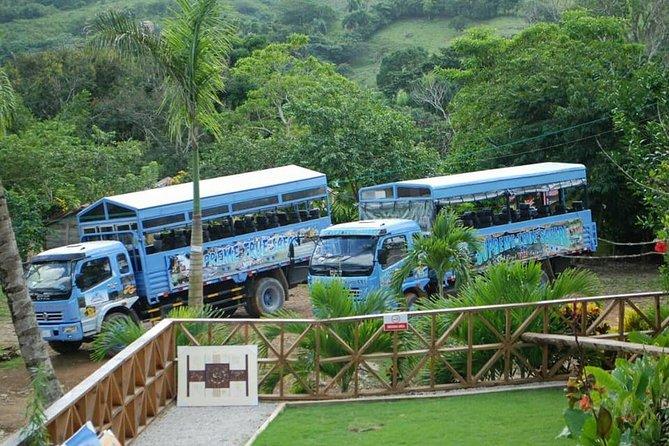 Full-Day Safari Tour from Punta Cana