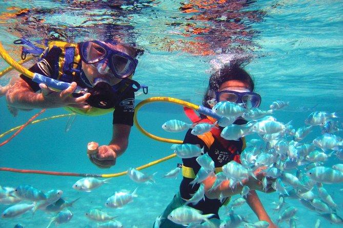 Half-Day Catamaran Cruise from Punta Cana with Parasailing, Snorkeling, Swimming