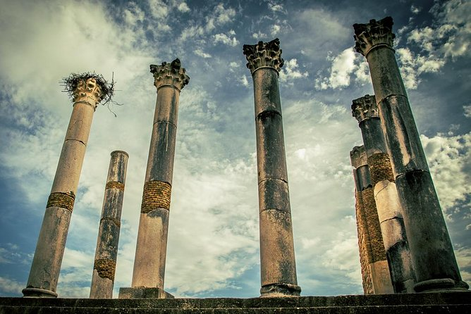 One Day Trip to Volubilis - Moulay Idriss - Meknes