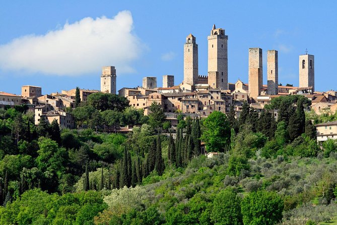 Private Tour: Siena, San Gimignano and Chianti Day Trip from Florence photo 20
