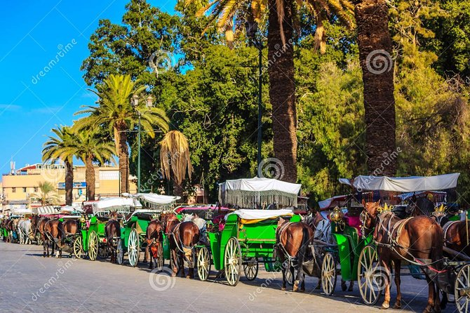 Marrakech Private Horse-Drawn Carriage Ride