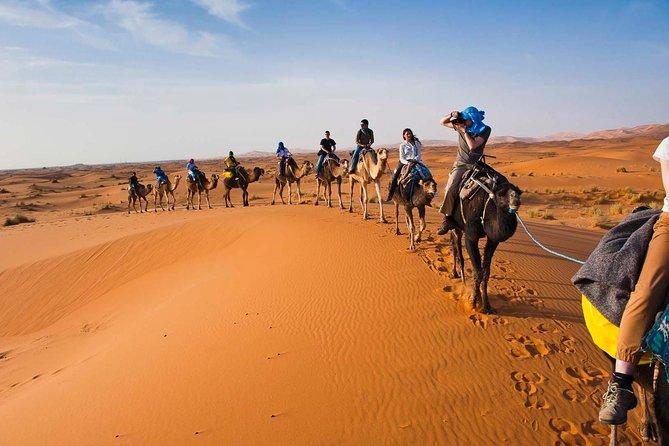 Marrakech to Zagora Desert tour