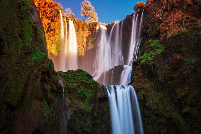 Ouzoud Waterfalls: Private Guided Day Tour from Marrakech