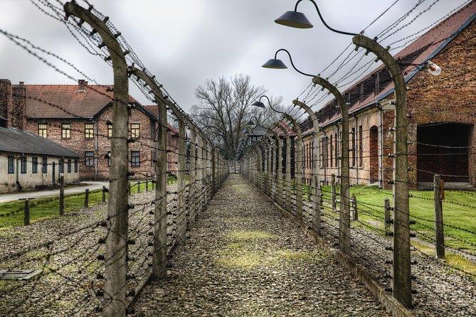 Tour met gids en vervoer naar Auschwitz-Birkenau vanuit Krakau