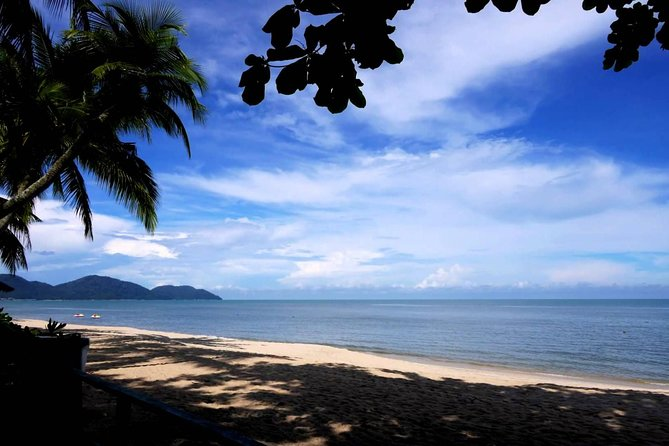 Private Half-Day Discovery Tour of Penang Island