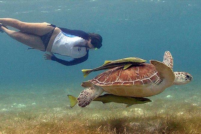 Tulum Ruins and Akumal Turtles Combo Tour