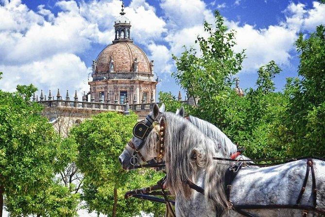 Jerez de la Frontera History and Art Walking Tour