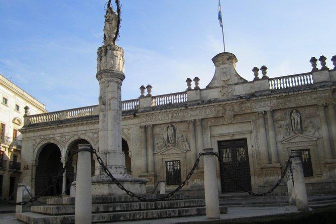 Visite guidée historique de Jerez avec spectacle équestre et visite de vignobles