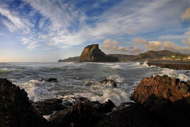 Half-Day Wild West Coast Tour including Lunch from Auckland