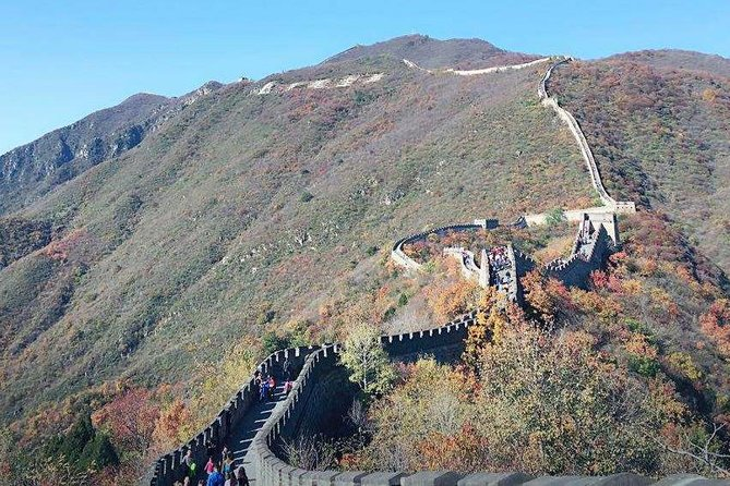 Mutianyu Great Wall + Summer Palace or Forbidden City or Ming Tombs Day Tour