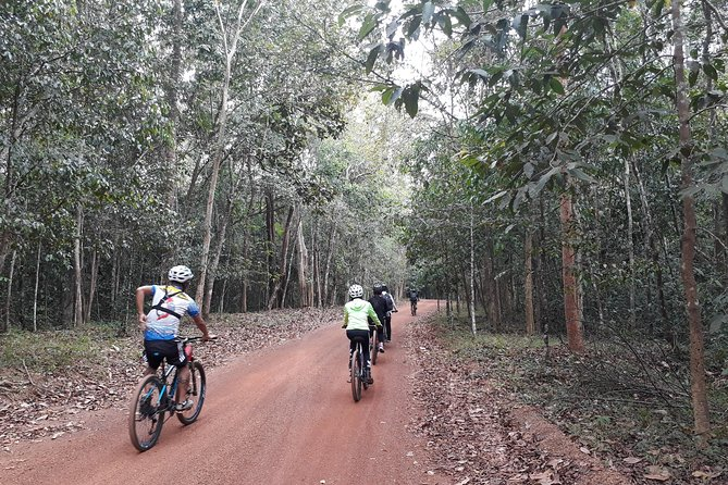 Exploring The Forest By Bikes