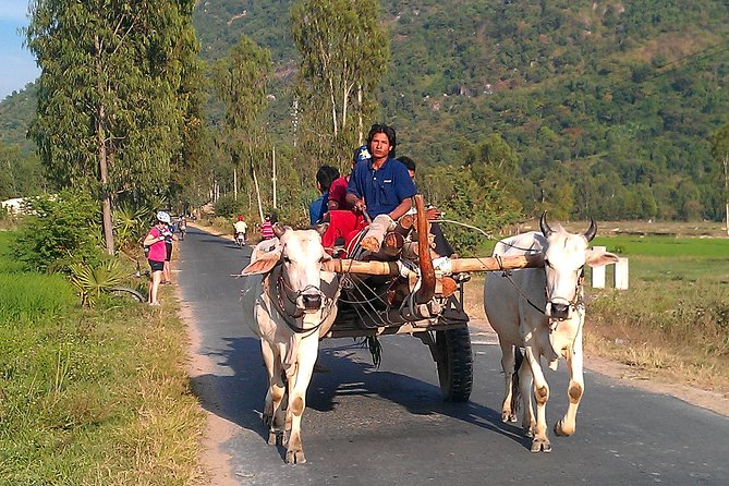 Nha Trang Countryside with Horse and Carriage Ride and Dien Khanh Citadel