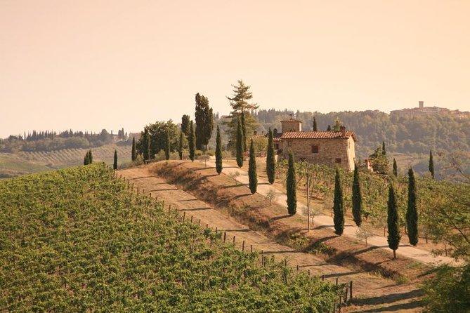 Halvdagstur i Chianti med traditionell toskansk middag och passande vin från Florens