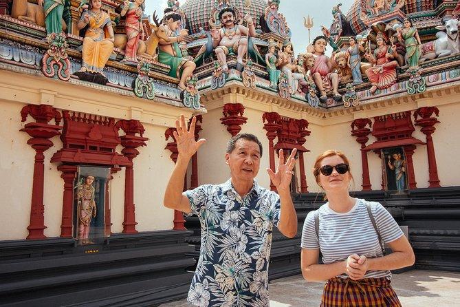 Full Coverage Singapore Private City Tour