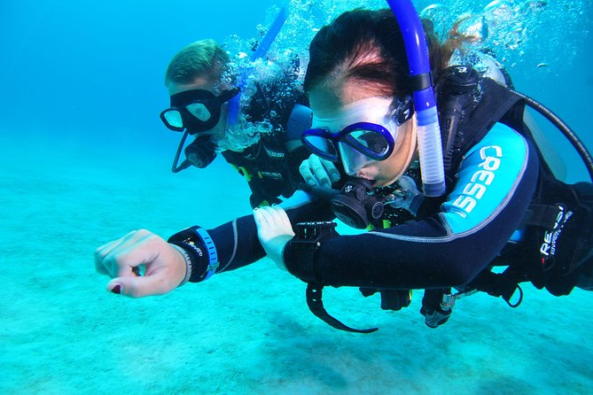 Continue your education with the Advanced Open Water Diver course - 2 days