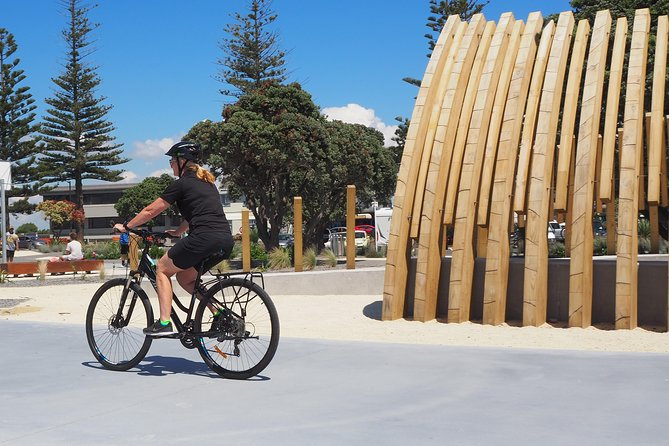 Napier Pathway Bike Hire