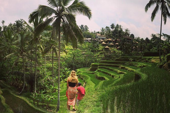 Private Tour: Balinese Culture and Scenery (visit ubud area)