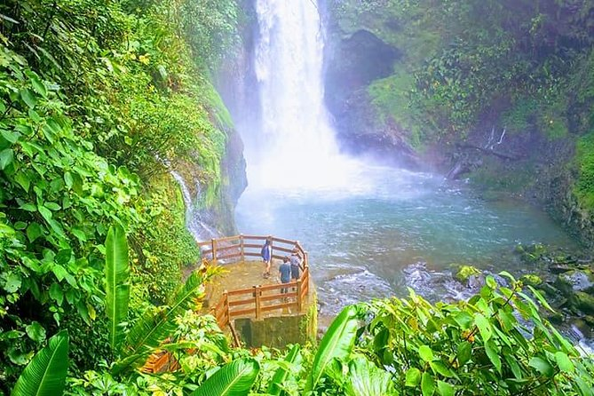Day trip from San Jose to Doka Coffee Plantations & La Paz Waterfall Gardens