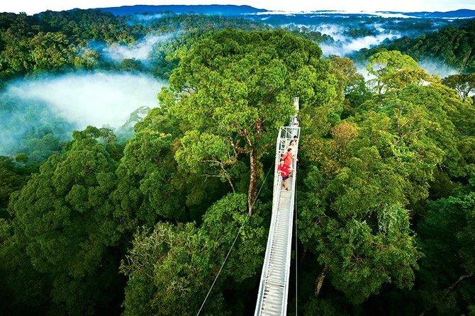 Excursión de un día desde San José a Monteverde Cloud Forest y Sky Adventure Park