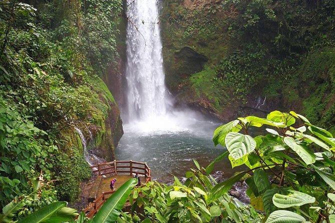 Excursión de un día a La Paz Waterfall Gardens y refugio de vida salvaje desde San José