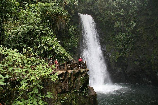 Day Trip from San Jose to La Paz Waterfall Gardens & Safari in Sarapiqui River