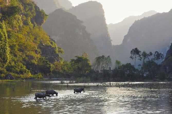 Tour Hoa Lu and Tam Coc- small group tour max 9 clients