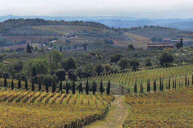 Tour privato di mezza giornata con degustazione di Chianti da Siena