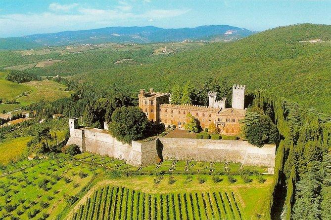 Excursión privada de un día al Taste of Chianti desde Siena