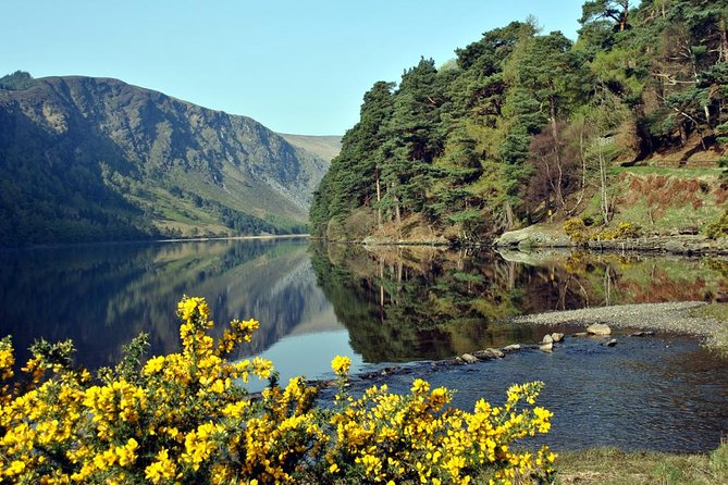 Wicklow, Powerscourt, and Glendalough Tour from Dublin