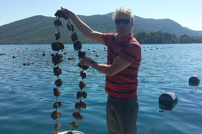4H STON, OYSTERS and WINE TOUR FROM DUBROVNIK
