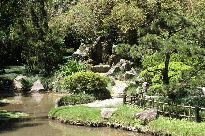 Rio de Janeiro Botanical Garden Tour