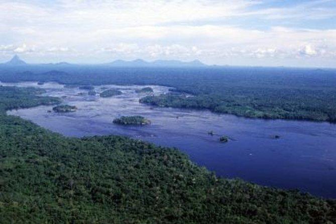 Excursão de Sobrevivência em Floresta Tropical saindo de Manaus