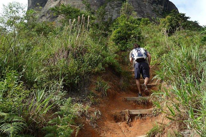 Hike through the Tijuca Rainforest to reach the top of Gavea Rock