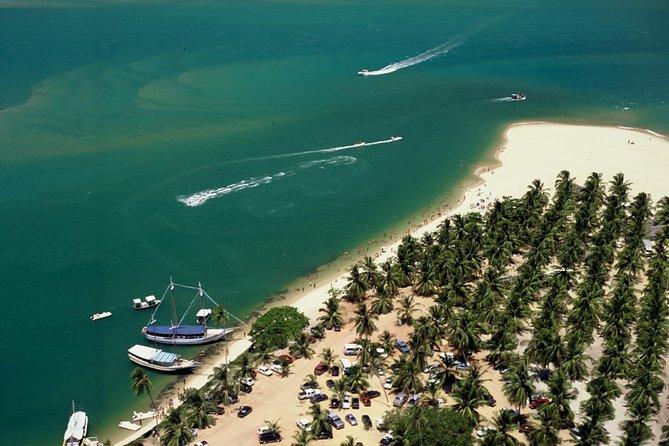 Excursão de um dia inteiro para a Praia do Gunga, saindo de Maceió