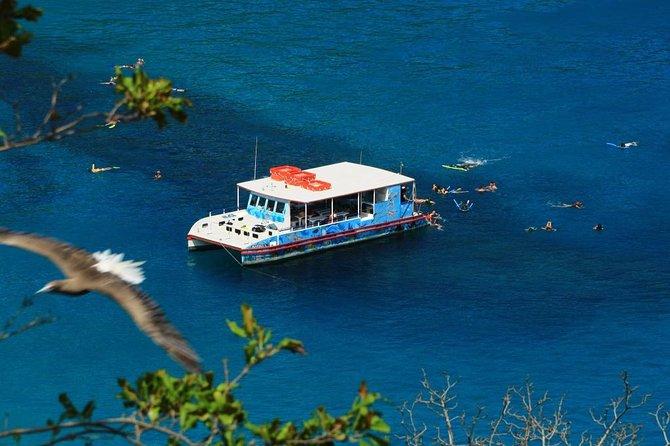 Sancho Bay Swim from Fernando de Noronha