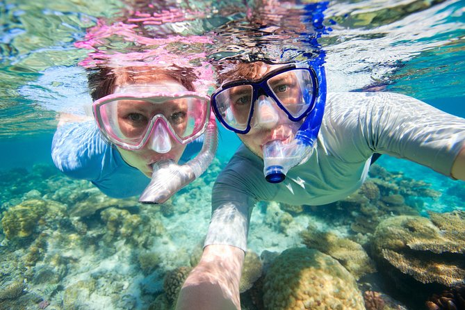Trindade Fishing Village, Beach Trek and Snorkeling Tour from Paraty