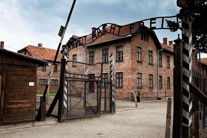 Full-Day Tour to Auschwitz-Birkenau and Wieliczka Salt Mine from Krakow