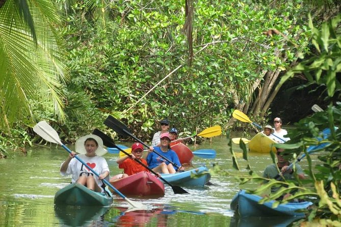 Damas Island Boat Tour From Quepos photo 1