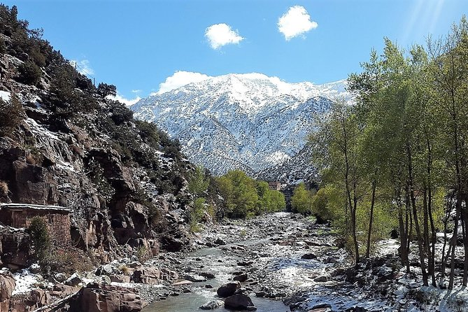 Ourika Valley including Camel Ride Lunch and Guided Hike Day Tour from Marrakech