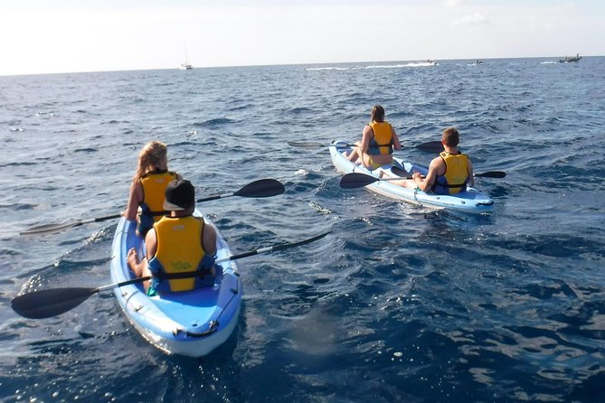 Guided Kayak Tour and Paella Lunch at the Beach in Valencia