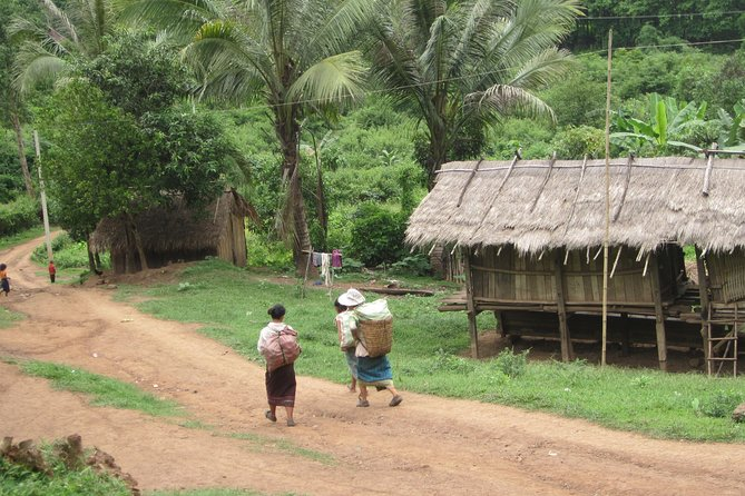 Half Day Living Land Farm from Luang Prabang (L) photo 1