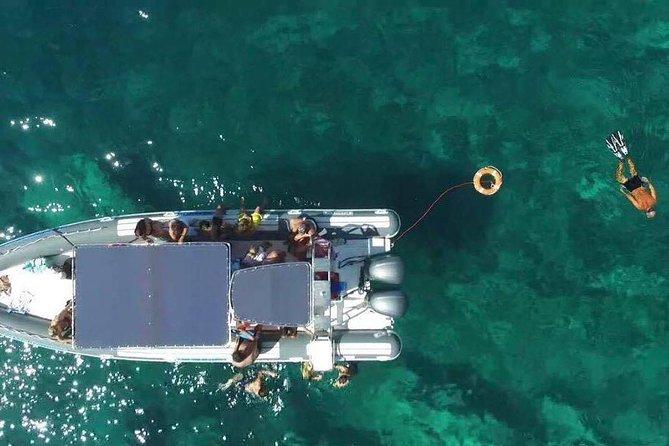 Tour in barca a Porto Selvaggio e le sue grotte