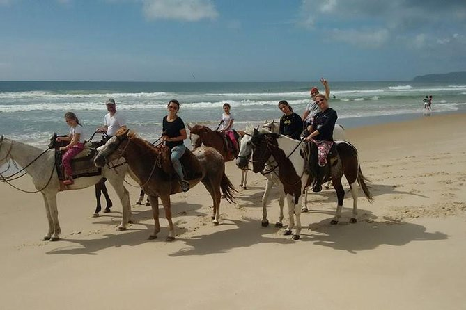 Horseback Riding on the Beach photo 1