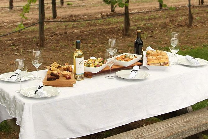 Catered Picnic lunch by