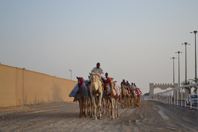 Sheikh Faisal, Camel Race Track and Equestrian Club Visit