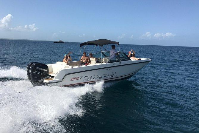 Full day trip around St Martin Maarten